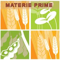 Materie Prime