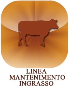 Mantenimento_6