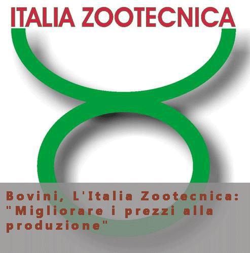 """Bovini, L'Italia Zootecnica: """"Migliorare i prezzi alla produzione"""""""